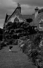 [ DraSei ] House & Garden bởi _jjluv