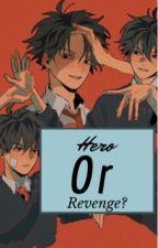 Hero or Revenge?  by sky2300