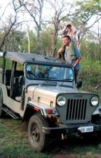 Facilities at the Wildlife Resorts in India by mcresort