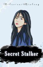 Secret Stalker by OctavianiBintang