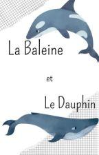 La Baleine et le Dauphin par riccio281