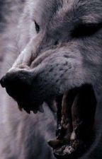 to be owned By A Werwolf  by Ariel1998ariya
