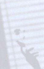ZENITH ACADEMY ° applyfic ° by sungchaniestaro