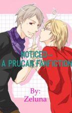 Noticed~ A PruCan fanfiction by Zeluna