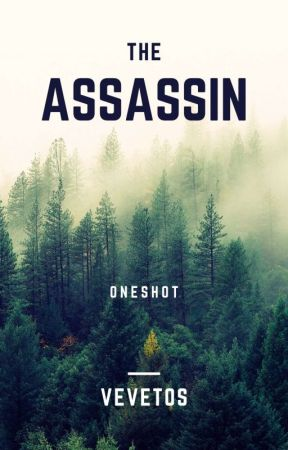 The assassin by vevetos