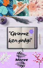 GÖRÜNMEZ KIZIN GÜNLÜĞÜ by Mervemizz1