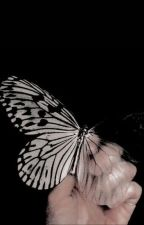 I MISS YOU, I'M SORRY →  t.chalamet. by -ladybxrds