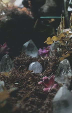 Witchy Tips & Crafts ⛧ by BENkitty123