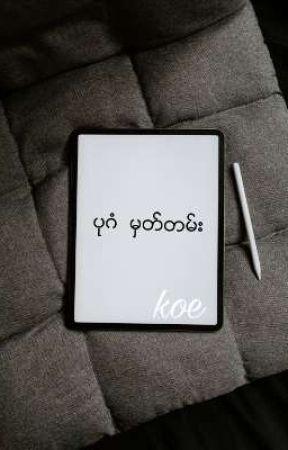 ပုဂံ မွတ္တမ္း ( ပုဂံ မှတ်တမ်း )  by koeekhoon