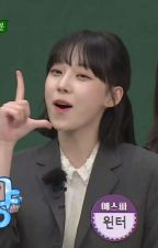 𝑫𝒖𝒎𝒃 𝑫𝒖𝒎𝒃 | Theme Dump and Help by -pastelkiss-