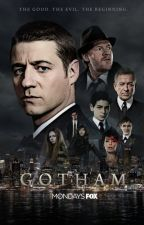 Gotham Holly and  Harry Helena potter the philosopher's stone 1🔴 by tamarayann97