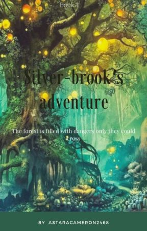 Silver-Brook's Adventure by -stxrgxzing-