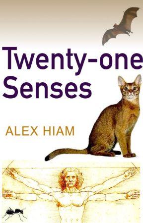 Twenty-one Senses by alexhiam