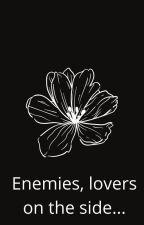 Enemies, lovers on the side by GargiKhair2727