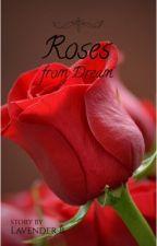 A Rose from Dream by llaavvenndderr