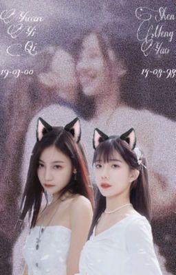 | Hắc Miêu | SNH48
