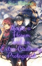 Magic, a Harem and a Extra-Ordinary Protagonist by Evan_Todoroki
