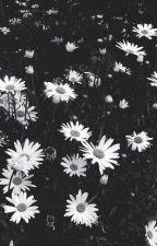 the liquid zoo by anime_shawties