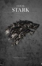 The Black Wolf of The North by Mighty_Stag15