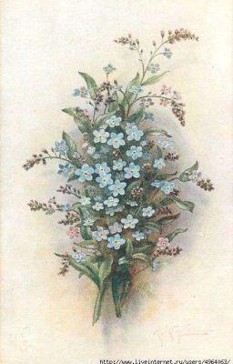 [Song Thẩm] Thanh Thu Kiếm - Senn