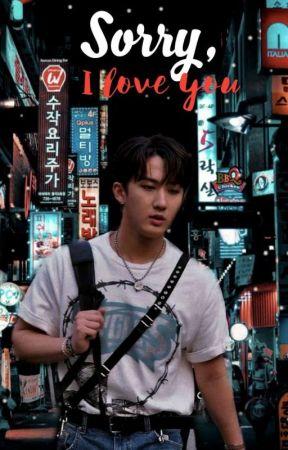 sorry, i love you // seo changbin by madameddie