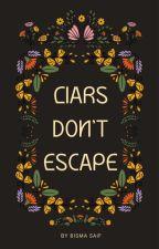 Liars don't Escape by bismasaiff