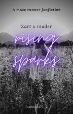 Rising Sparks // TMR English // Zart x reader by Jasmien479_2