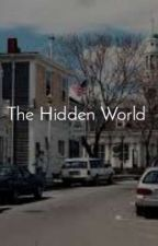 The Hidden World, de RaayWells
