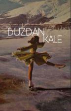 BUZDAN KALE by ouinone