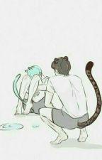 taegi | dỗ mèo không dễ bởi meowchim93