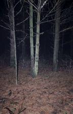 Paranormales Erlebnis. von 0Duck0