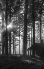 Tajemnicza historia obozu... autorstwa ZuzannaKomorowska3