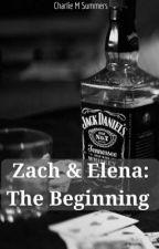 Zach & Elena: The Beginning  by CharlieMSummers