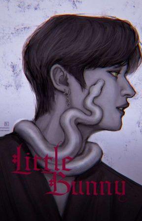 LITTLE BUNNY ✧ MinSung  by minsungloves-