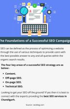 The Foundations of a Successful SEO Campaign by henrythomas2929