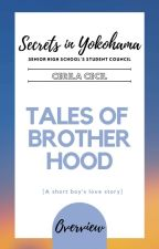 SYSHSC Overview: Tales of Brotherhood by Ceryllah_Cecille