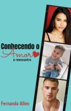 Conhecendo O Amor 2 - O reencontro. by nandecs