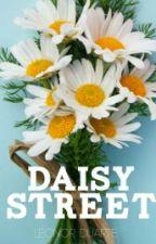 Daisy Street by nocasnocas