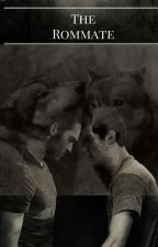The Roommate (Sterek fic) by adoreyoularry21