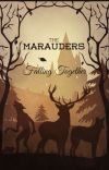 Falling Together (Marauders/Harry Potter) cover