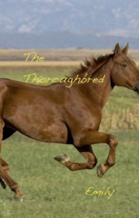 The Thoroughbred  Poem **Emily** by PigsAtHeart