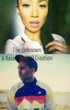 The Unknown (A Chris Brown Love Story) COMPLETED by ArtistryByBadu