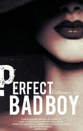 Perfect Bad Boy. TOME 1 by Celinours_60