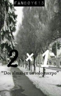 2x1 cover