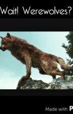 Wait! Werewolves? (Complete) by musicgirl2465