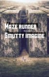 Maze Runner Smutty Imagines cover