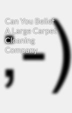 Can You Belief A Large Carpet Cleaning Company by cook9men