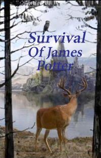 Survival Of James Potter cover