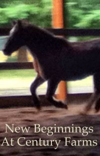 New Beginnings at Century Farms cover