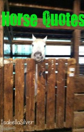Horse Quotes by IsabellaSilver